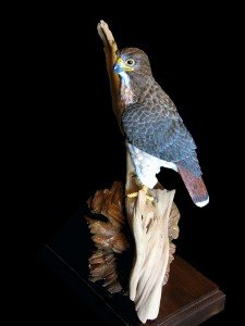 Red-Rock Red-Tail - Red-Tailed Hawk Wood Carving, 1/3 Life Size