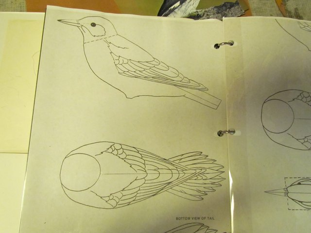 Develop Feather Layout