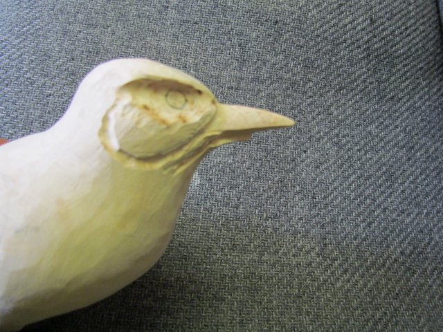 Beak and Eye Channels