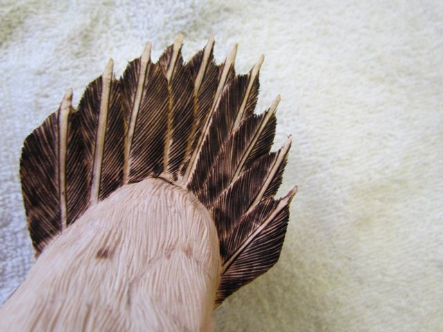 Tail Feathers Are Burned