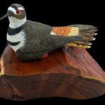 """At Rest"" Killdeer Carving"