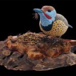 Red Shafted Northern Flicker on an ant hill