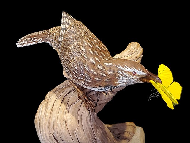 """Caught"" Life-size Cactus Wren and Yellow Sulfur Butterfly"